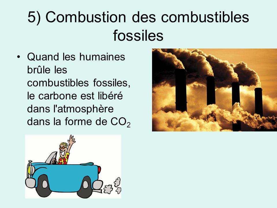 5) Combustion des combustibles fossiles Quand les humaines brûle les combustibles fossiles, le carbone est libéré dans l'atmosphère dans la forme de C