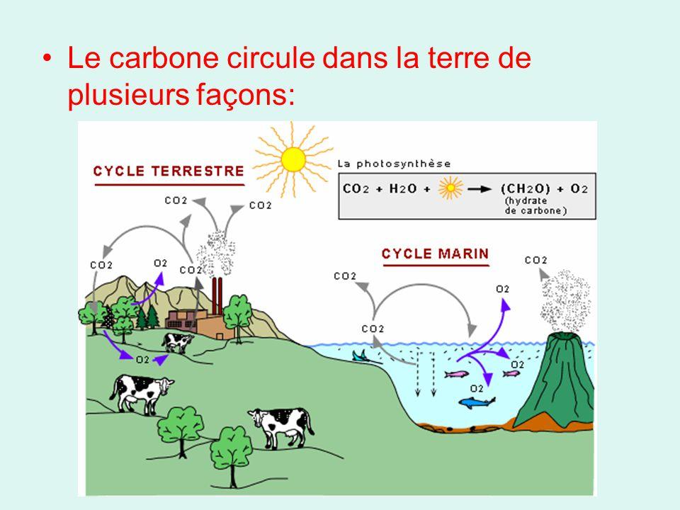 1) Photosynthèse Les plantes vertes utilisent lénergie lumineuse pour convertir le CO 2 en sucres, en libérant de lO 2 dans le processus: 6CO 2 + 6H 2 O + lénergie C 6 H 12 O 6 + 6O 2 Oui, vous devez mémorisez cette formule