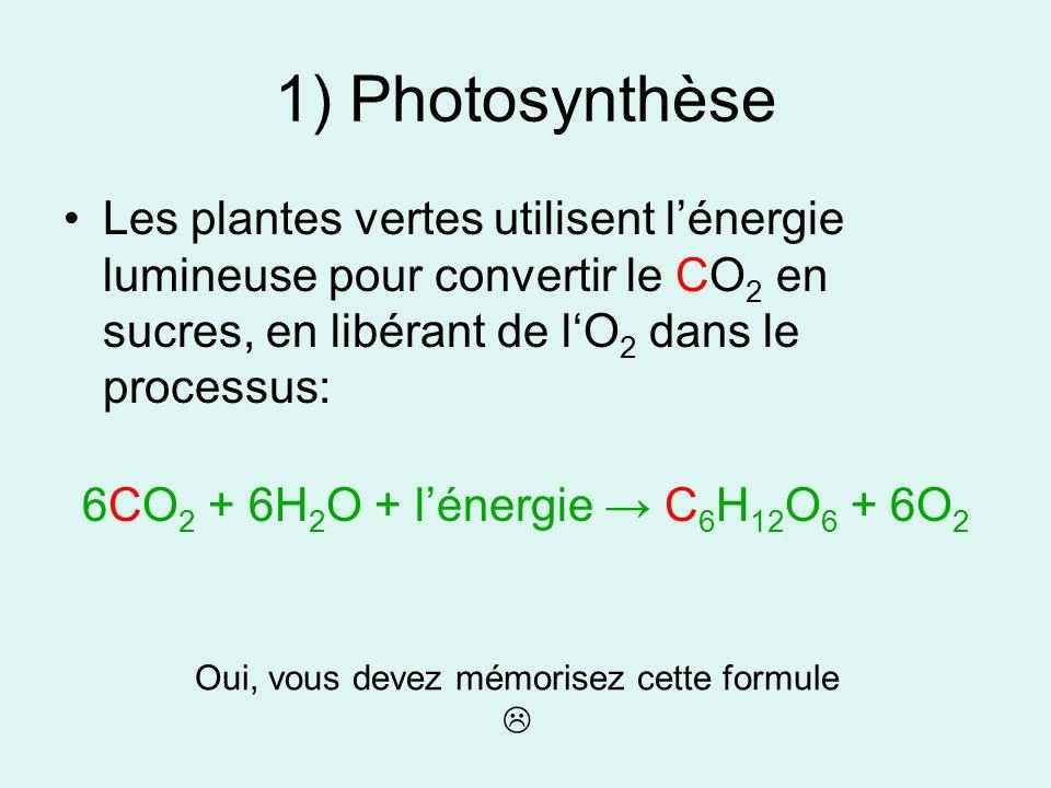1) Photosynthèse Les plantes vertes utilisent lénergie lumineuse pour convertir le CO 2 en sucres, en libérant de lO 2 dans le processus: 6CO 2 + 6H 2