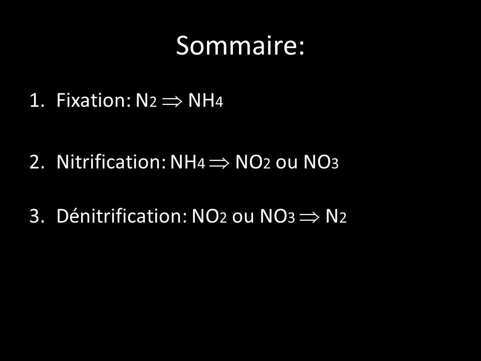 Sommaire: 1.Fixation: N 2 NH 4 2.Nitrification: NH 4 NO 2 ou NO 3 3.Dénitrification: NO 2 ou NO 3 N 2