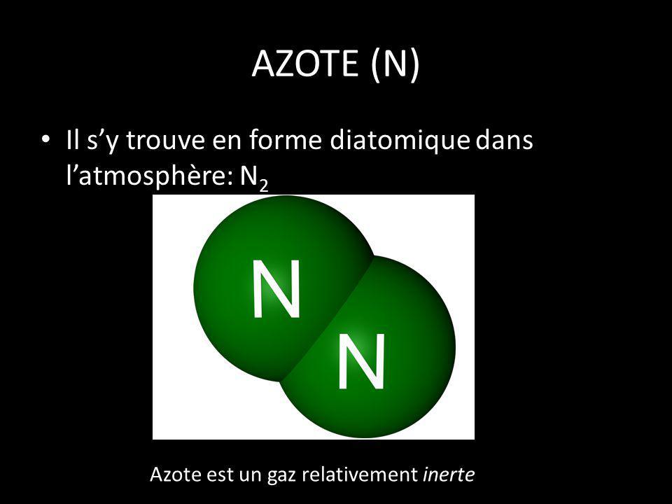 Limportance dazote Les organismes ont besoin dazote pour fabriquer des protéines et des acides nucléiques.