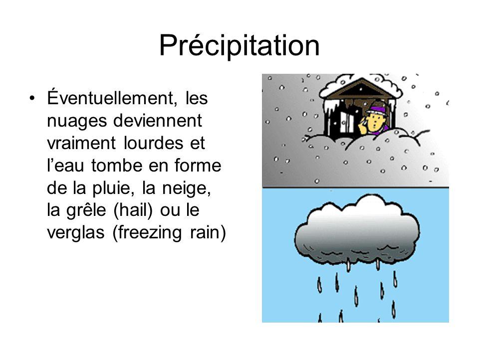 Précipitation Éventuellement, les nuages deviennent vraiment lourdes et leau tombe en forme de la pluie, la neige, la grêle (hail) ou le verglas (free