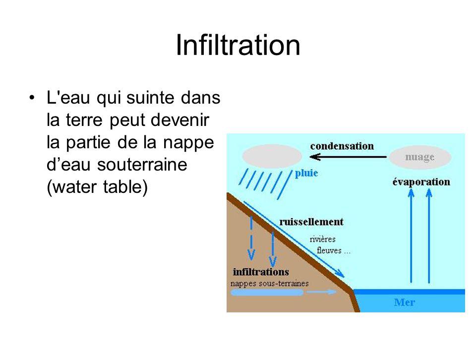 Infiltration L'eau qui suinte dans la terre peut devenir la partie de la nappe deau souterraine (water table)
