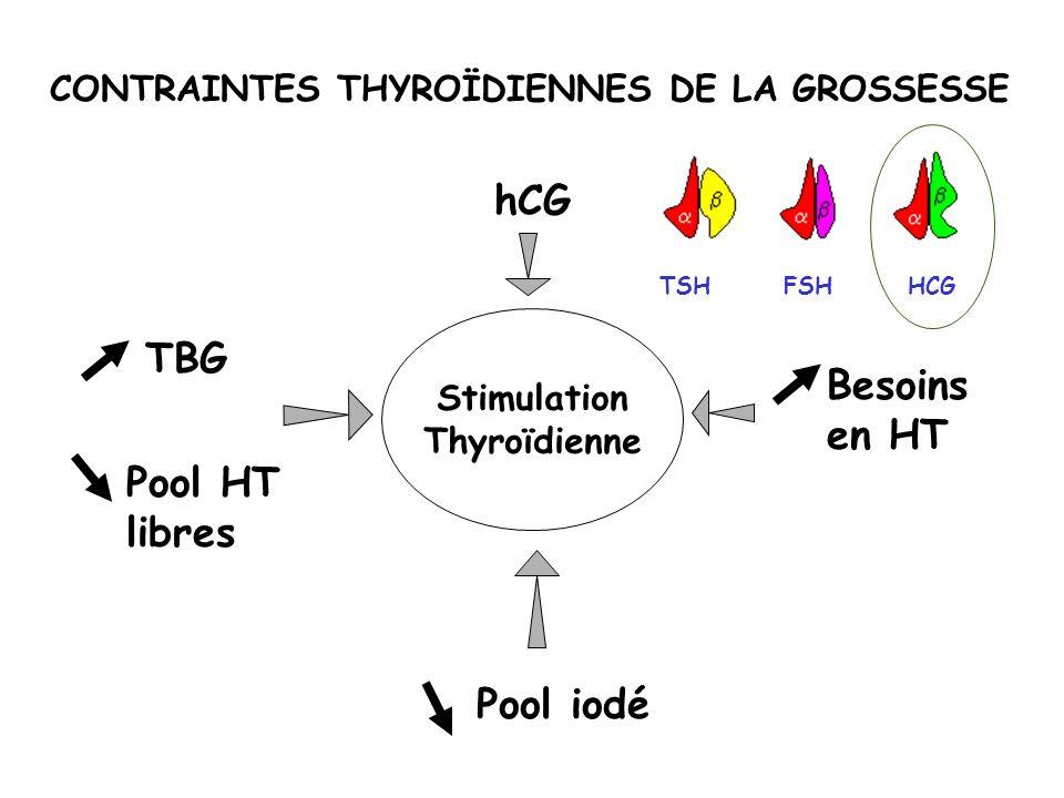 CONTRAINTES THYROÏDIENNES DE LA GROSSESSE Stimulation Thyroïdienne hCG Besoins en HT Pool iodé TBG Pool HT libres HCGFSHTSH