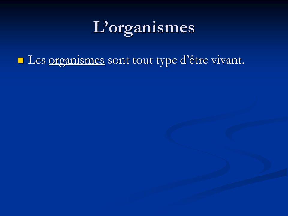 Lorganismes Les organismes sont tout type dêtre vivant. Les organismes sont tout type dêtre vivant.
