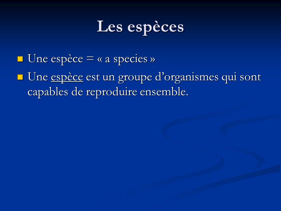 Les espèces Une espèce = « a species » Une espèce = « a species » Une espèce est un groupe dorganismes qui sont capables de reproduire ensemble.