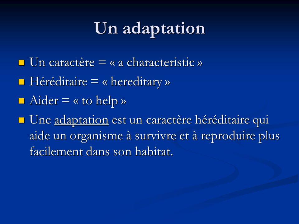 Un adaptation Un caractère = « a characteristic » Un caractère = « a characteristic » Héréditaire = « hereditary » Héréditaire = « hereditary » Aider = « to help » Aider = « to help » Une adaptation est un caractère héréditaire qui aide un organisme à survivre et à reproduire plus facilement dans son habitat.