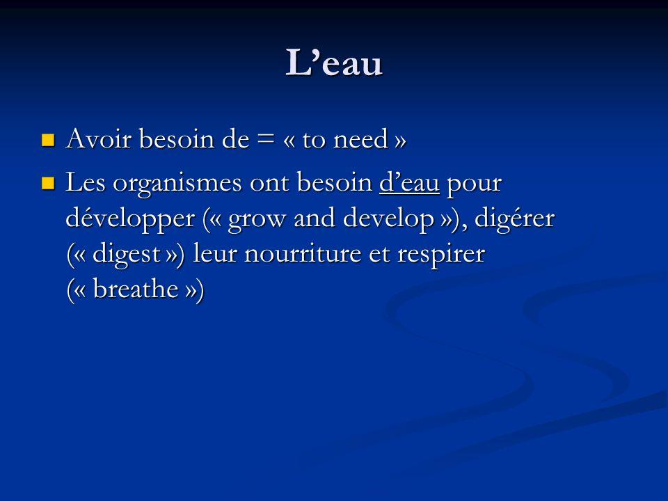 Leau Avoir besoin de = « to need » Avoir besoin de = « to need » Les organismes ont besoin deau pour développer (« grow and develop »), digérer (« digest ») leur nourriture et respirer (« breathe ») Les organismes ont besoin deau pour développer (« grow and develop »), digérer (« digest ») leur nourriture et respirer (« breathe »)