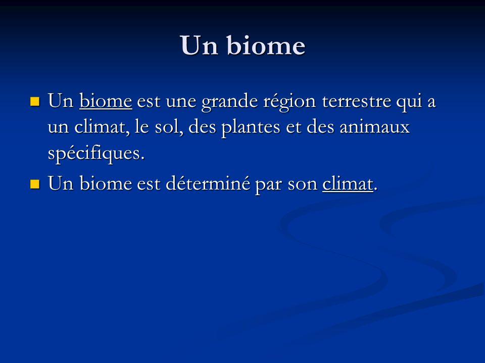 Un biome Un biome est une grande région terrestre qui a un climat, le sol, des plantes et des animaux spécifiques.
