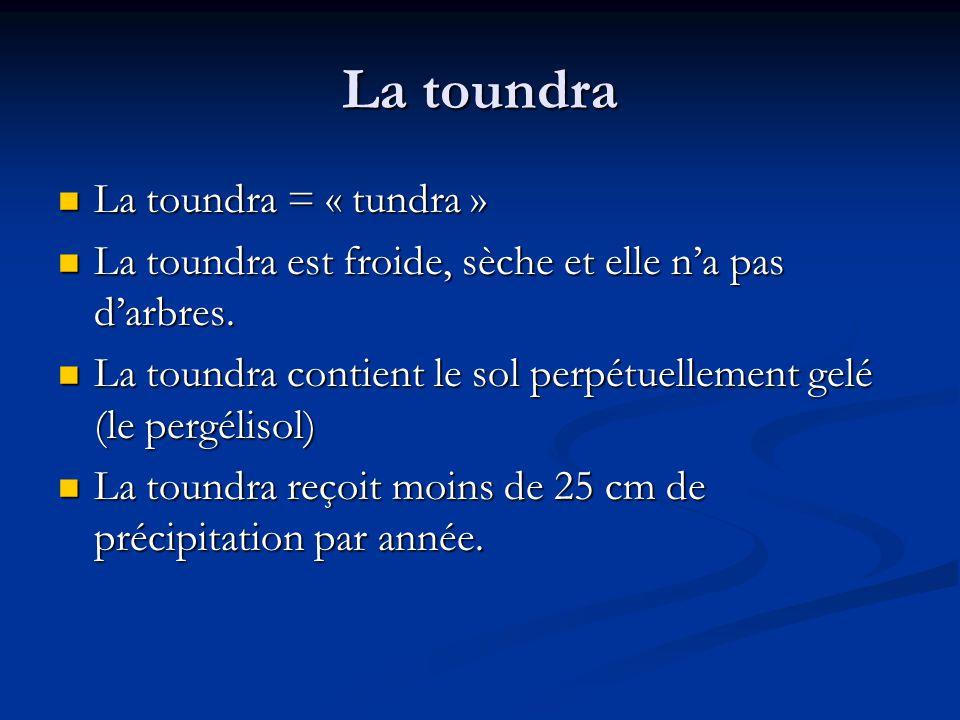 La toundra La toundra = « tundra » La toundra = « tundra » La toundra est froide, sèche et elle na pas darbres.