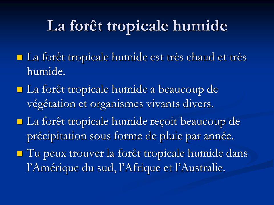 La forêt tropicale humide La forêt tropicale humide est très chaud et très humide.