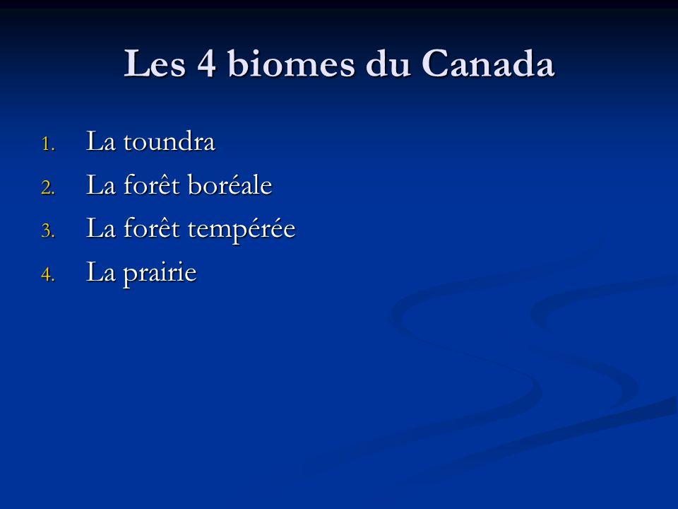 Les 4 biomes du Canada 1. La toundra 2. La forêt boréale 3. La forêt tempérée 4. La prairie
