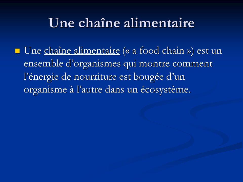 Une chaîne alimentaire Une chaîne alimentaire (« a food chain ») est un ensemble dorganismes qui montre comment lénergie de nourriture est bougée dun organisme à lautre dans un écosystème.