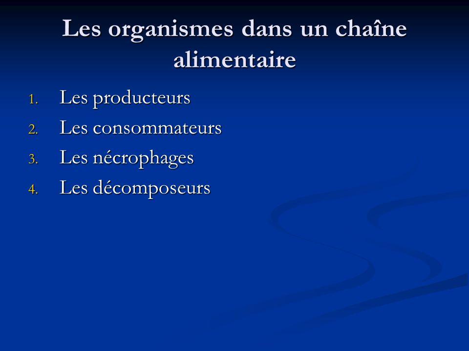 Les organismes dans un chaîne alimentaire 1.Les producteurs 2.