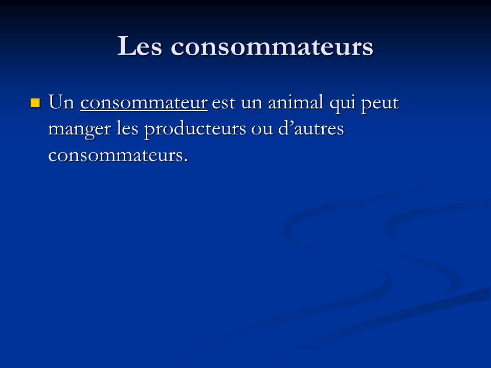 Les consommateurs Un consommateur est un animal qui peut manger les producteurs ou dautres consommateurs.