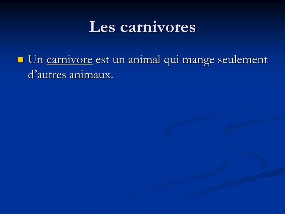 Les carnivores Un carnivore est un animal qui mange seulement dautres animaux.