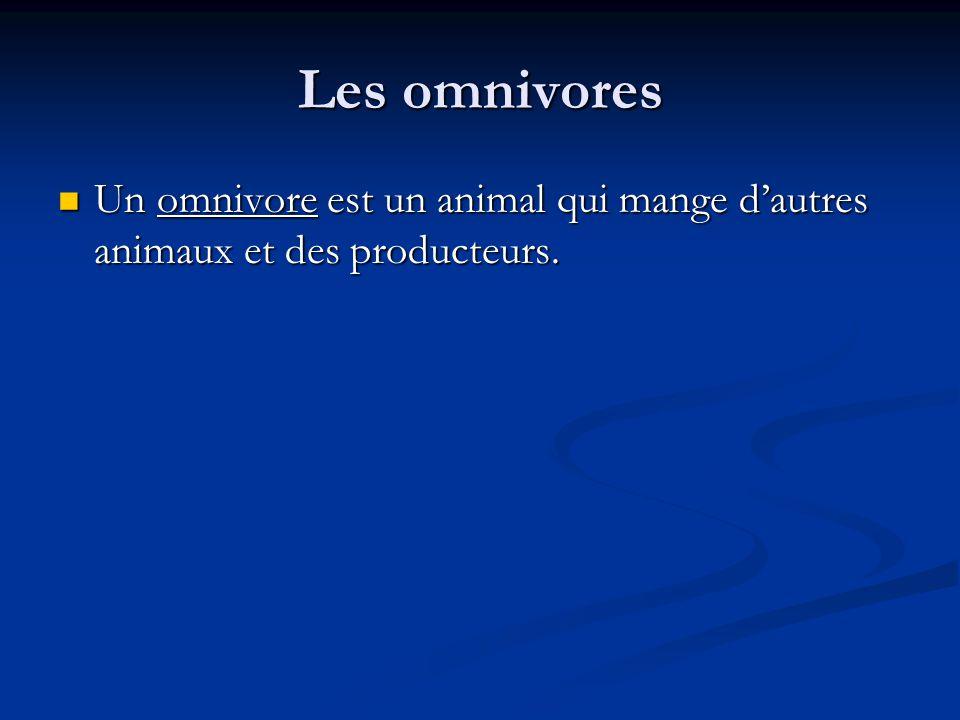 Les omnivores Un omnivore est un animal qui mange dautres animaux et des producteurs.