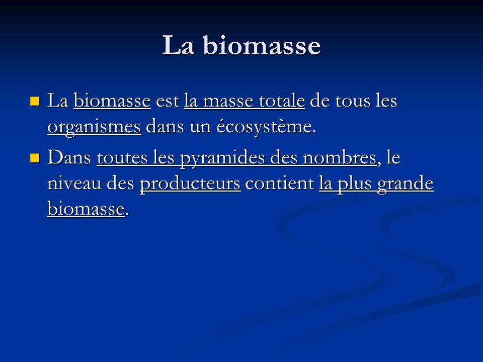 La biomasse La biomasse est la masse totale de tous les organismes dans un écosystème.