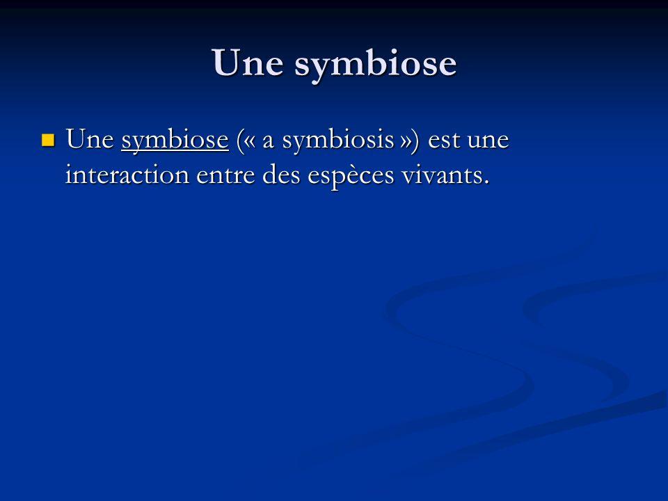 Une symbiose Une symbiose (« a symbiosis ») est une interaction entre des espèces vivants.