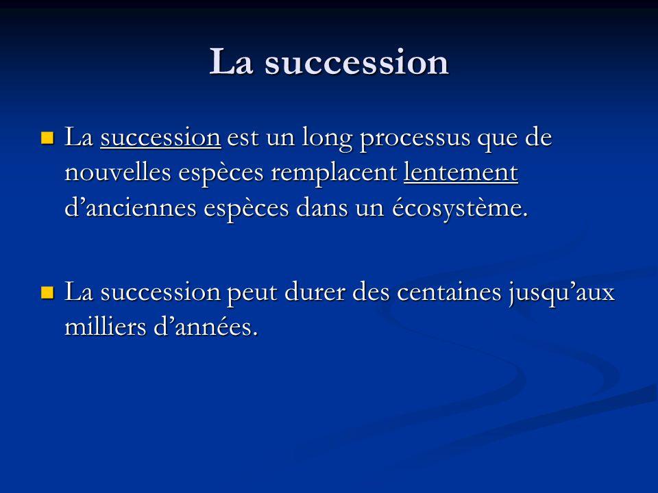 La succession La succession est un long processus que de nouvelles espèces remplacent lentement danciennes espèces dans un écosystème.