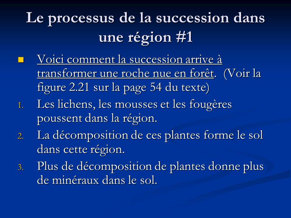 Le processus de la succession dans une région #1 Voici comment la succession arrive à transformer une roche nue en forêt.