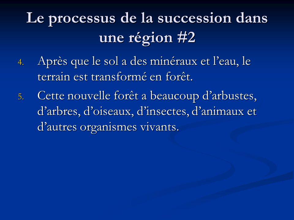 Le processus de la succession dans une région #2 4.
