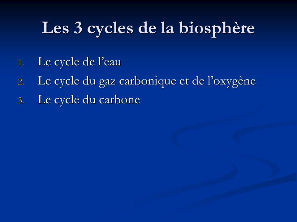 Les 3 cycles de la biosphère 1.Le cycle de leau 2.
