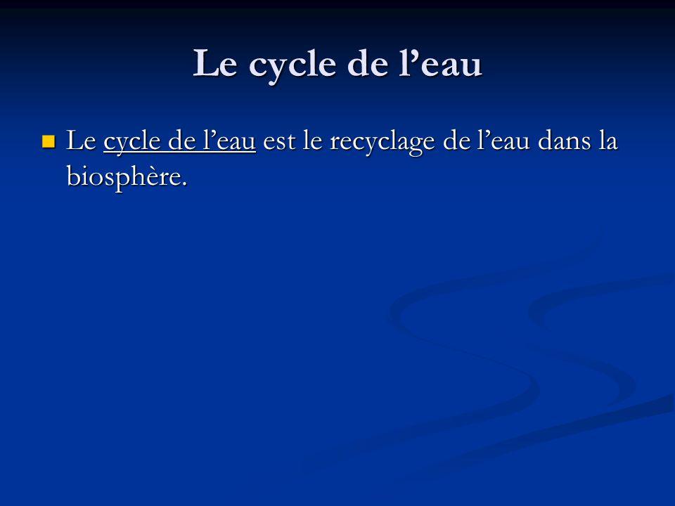 Le cycle de leau Le cycle de leau est le recyclage de leau dans la biosphère.
