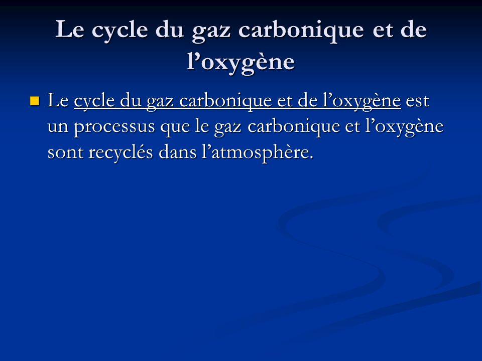 Le cycle du gaz carbonique et de loxygène Le cycle du gaz carbonique et de loxygène est un processus que le gaz carbonique et loxygène sont recyclés dans latmosphère.