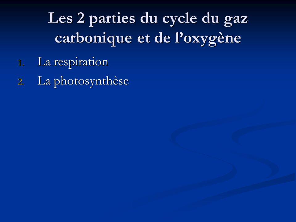 Les 2 parties du cycle du gaz carbonique et de loxygène 1. La respiration 2. La photosynthèse