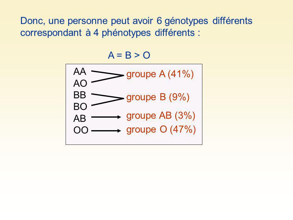 Donc, une personne peut avoir 6 génotypes différents correspondant à 4 phénotypes différents : AA AO BB BO AB OO groupe A (41%) groupe B (9%) groupe A