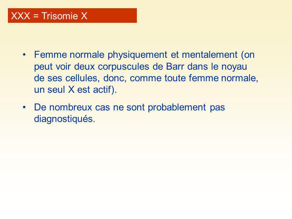 XXX = Trisomie X Femme normale physiquement et mentalement (on peut voir deux corpuscules de Barr dans le noyau de ses cellules, donc, comme toute fem