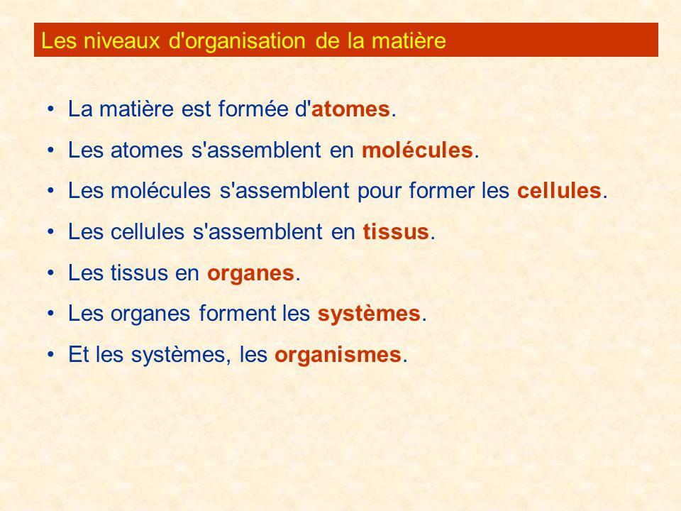 Les niveaux d'organisation de la matière La matière est formée d'atomes. Les atomes s'assemblent en molécules. Les molécules s'assemblent pour former