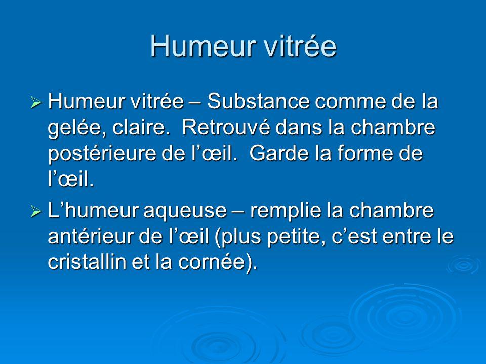 Humeur vitrée Humeur vitrée – Substance comme de la gelée, claire. Retrouvé dans la chambre postérieure de lœil. Garde la forme de lœil. Humeur vitrée