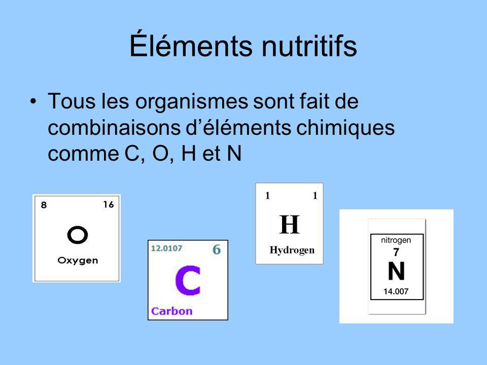 Éléments nutritifs Tous les organismes sont fait de combinaisons déléments chimiques comme C, O, H et N