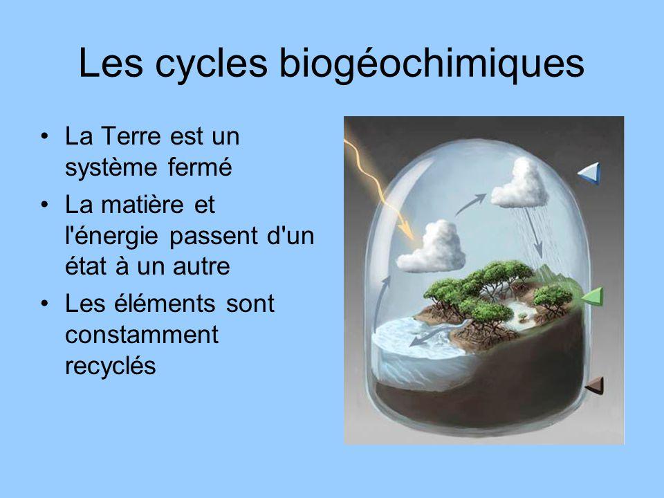 Les cycles biogéochimiques La Terre est un système fermé La matière et l'énergie passent d'un état à un autre Les éléments sont constamment recyclés