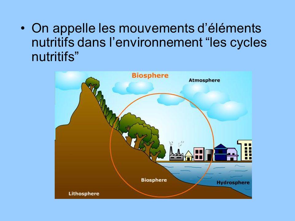 On appelle les mouvements déléments nutritifs dans lenvironnement les cycles nutritifs