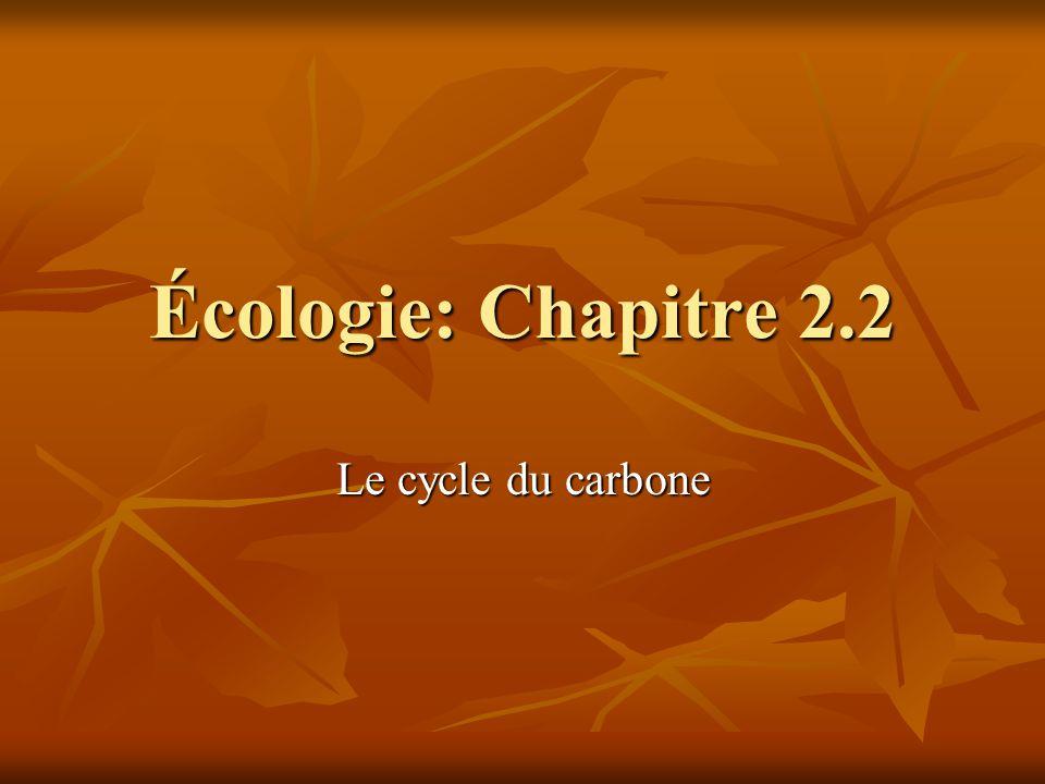 Écologie: Chapitre 2.2 Le cycle du carbone