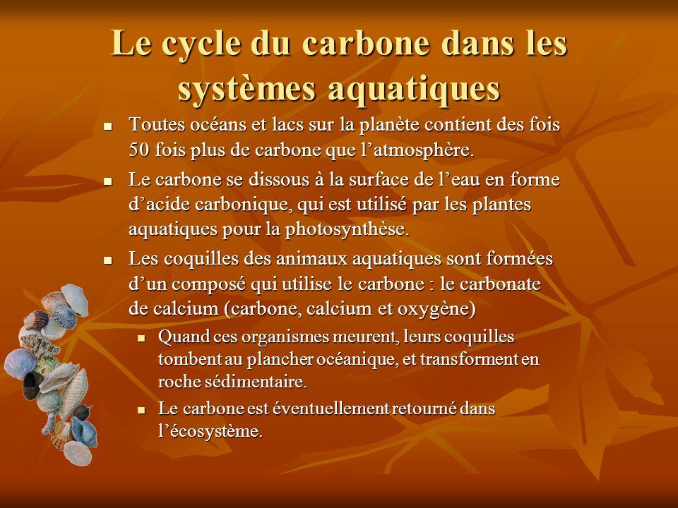 Le cycle du carbone dans les systèmes aquatiques Toutes océans et lacs sur la planète contient des fois 50 fois plus de carbone que latmosphère. Toute