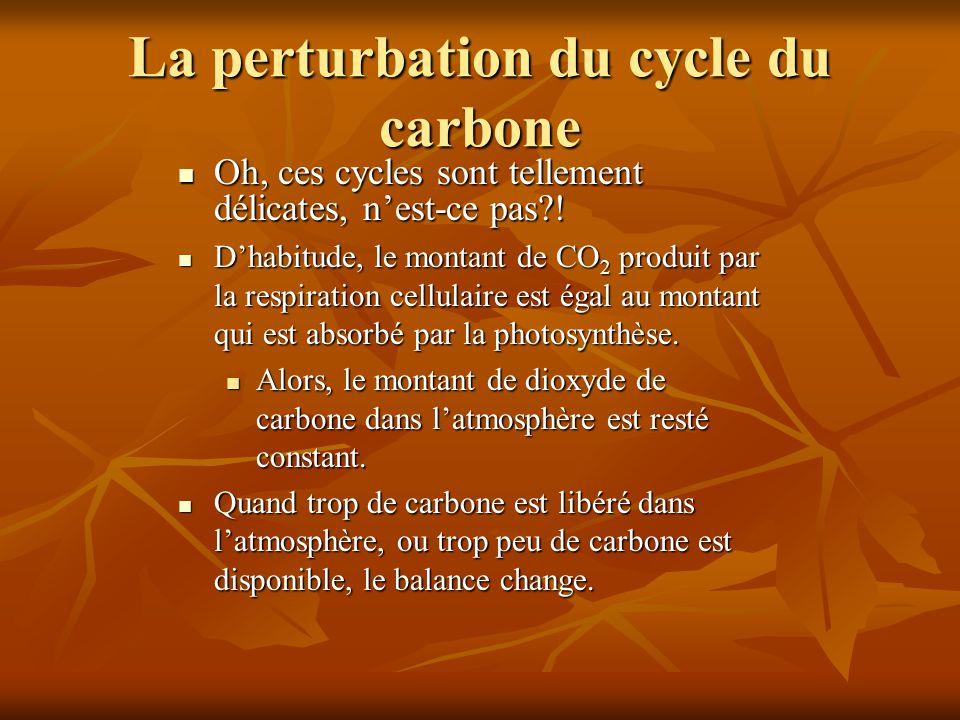 La perturbation du cycle du carbone Oh, ces cycles sont tellement délicates, nest-ce pas?! Oh, ces cycles sont tellement délicates, nest-ce pas?! Dhab