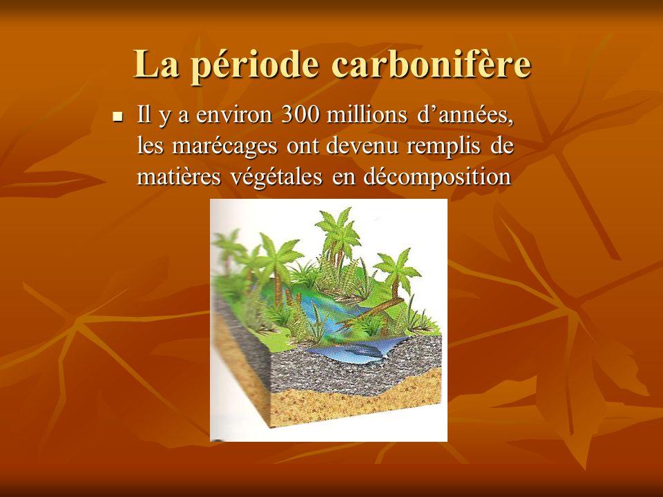 La période carbonifère Il y a environ 300 millions dannées, les marécages ont devenu remplis de matières végétales en décomposition Il y a environ 300