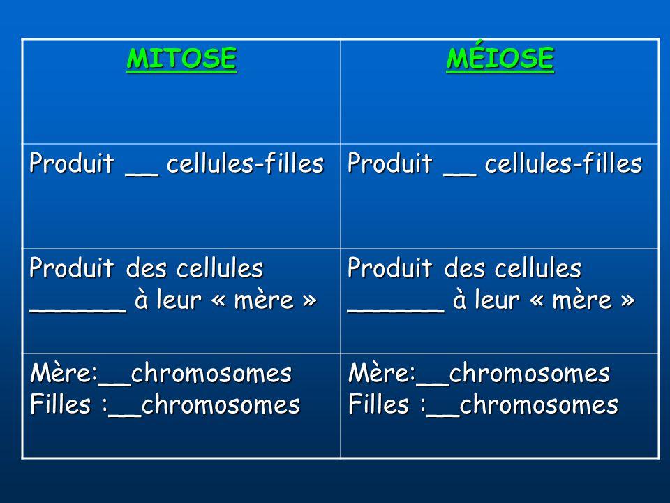 MITOSEMÉIOSE Produit __ cellules-filles Produit des cellules ______ à leur « mère » Mère:__chromosomes Filles :__chromosomes