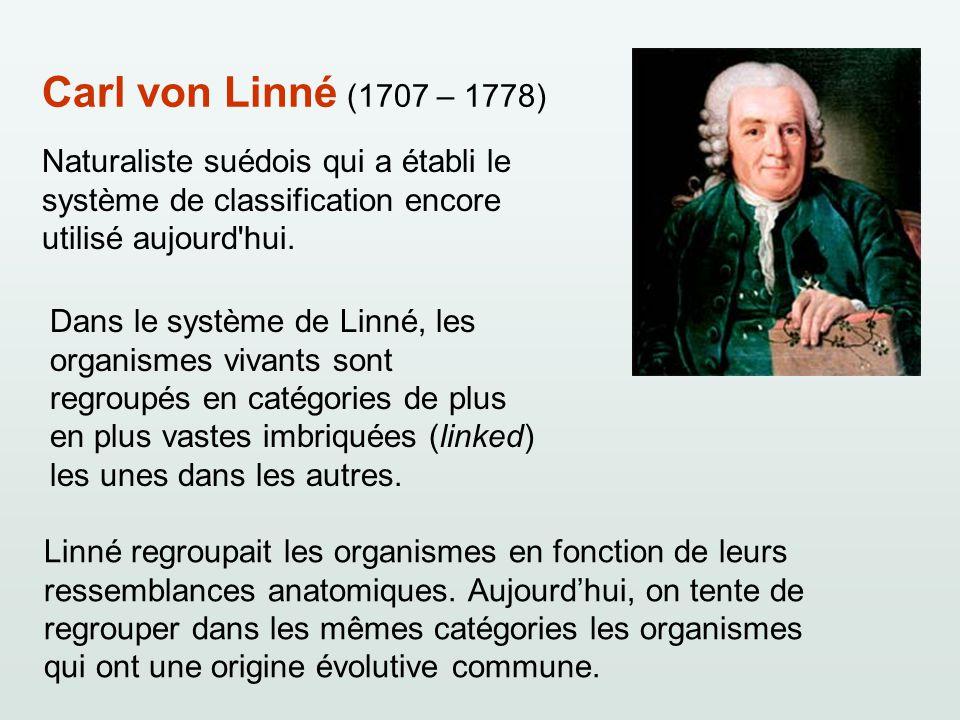 Carl von Linné (1707 – 1778) Naturaliste suédois qui a établi le système de classification encore utilisé aujourd'hui. Dans le système de Linné, les o