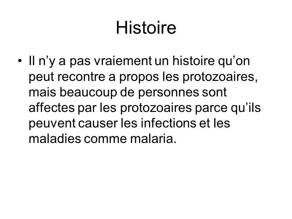 Histoire Il ny a pas vraiement un histoire quon peut recontre a propos les protozoaires, mais beaucoup de personnes sont affectes par les protozoaires