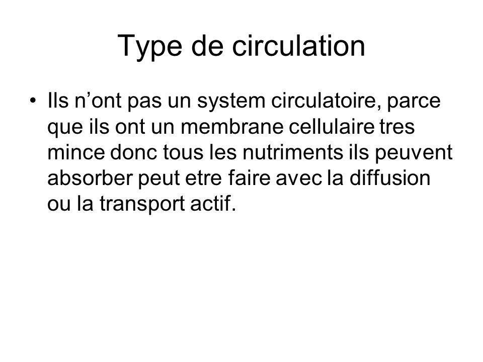 Type de circulation Ils nont pas un system circulatoire, parce que ils ont un membrane cellulaire tres mince donc tous les nutriments ils peuvent abso