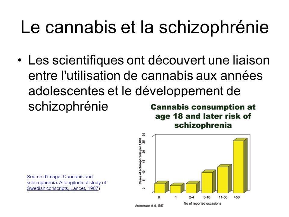 Le cannabis et la schizophrénie Les scientifiques ont découvert une liaison entre l'utilisation de cannabis aux années adolescentes et le développemen
