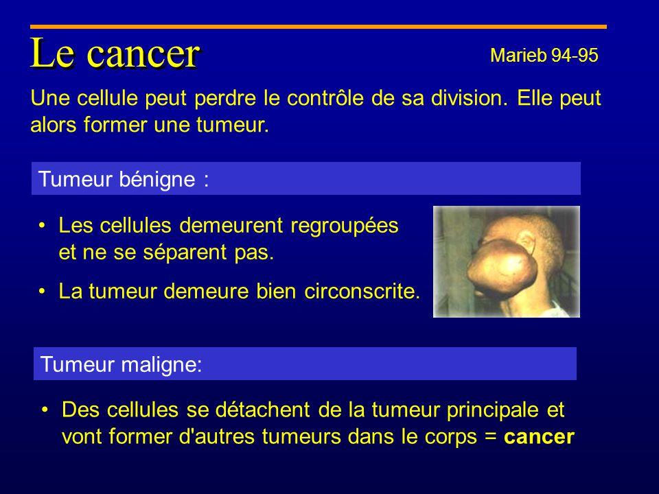 Le cancer Une cellule peut perdre le contrôle de sa division.