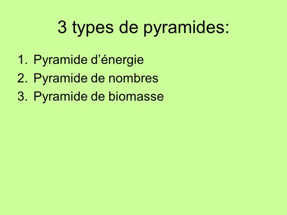 3 types de pyramides: 1.Pyramide dénergie 2.Pyramide de nombres 3.Pyramide de biomasse