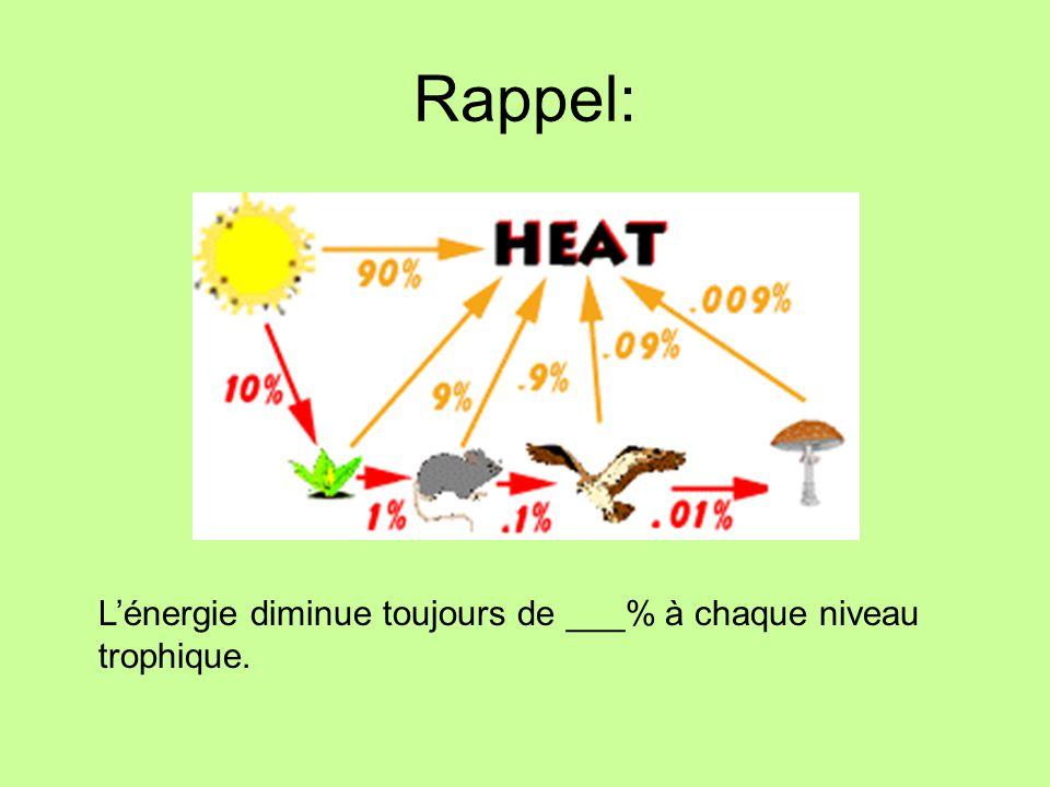 Pyramide dénergie - Illustre que lénergie disponible à chaque niveau trophique diminue en allant vers le haut de la chaîne alimentaire Note: La lumière ne fait pas partie de la pyramide car ce nest pas vivant.