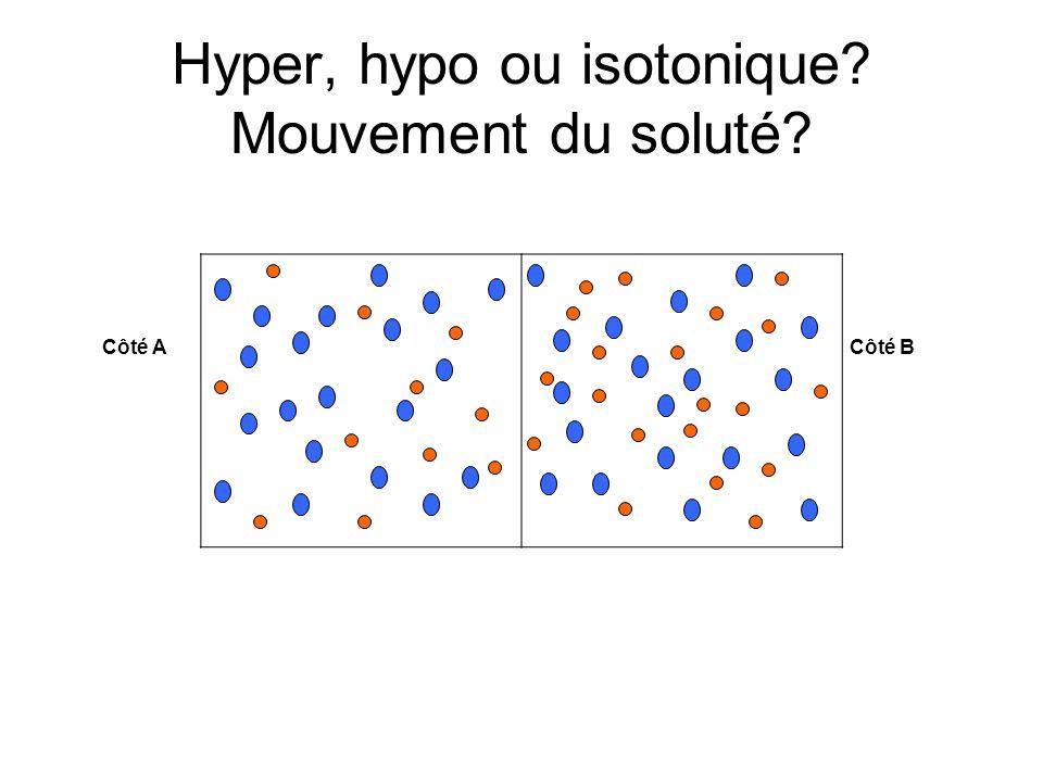 Hyper, hypo ou isotonique? Mouvement du soluté? Côté A Côté B